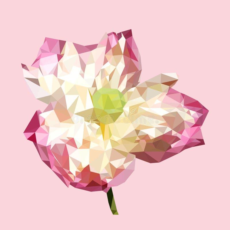 Lótus cor-de-rosa poligonais, flor do triângulo do polígono, vetor ilustração royalty free