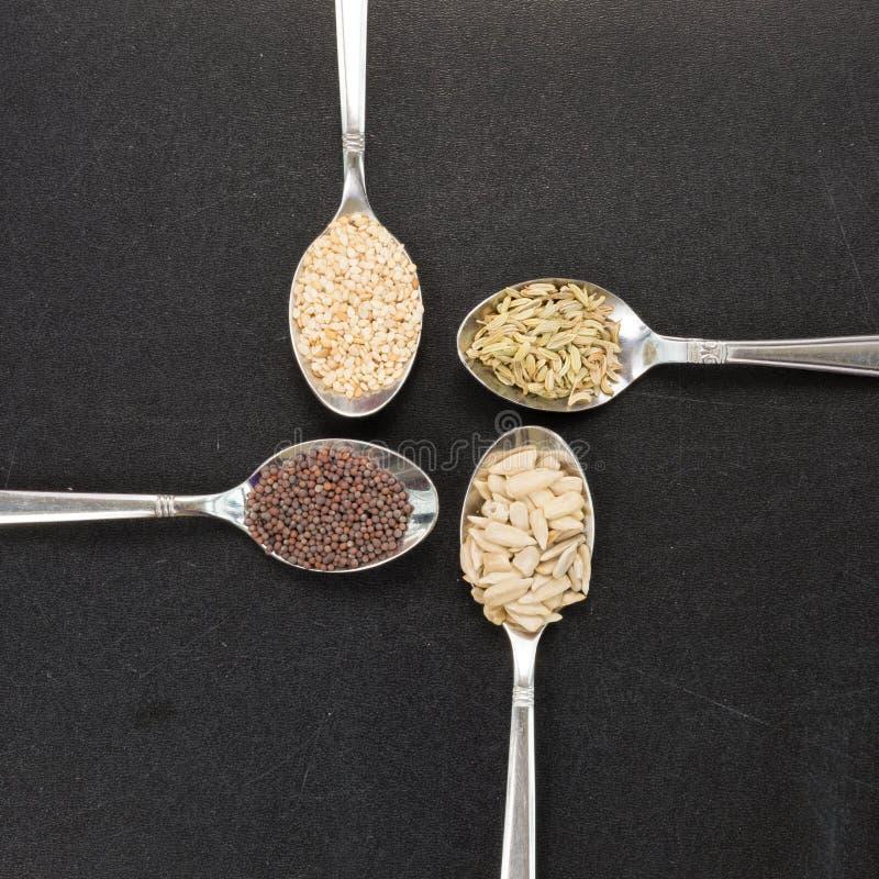 Löffel des Fenchelsenfkorns des Sonnenblumenindischen sesams für makrobiotisches Lebensmittel lizenzfreies stockbild