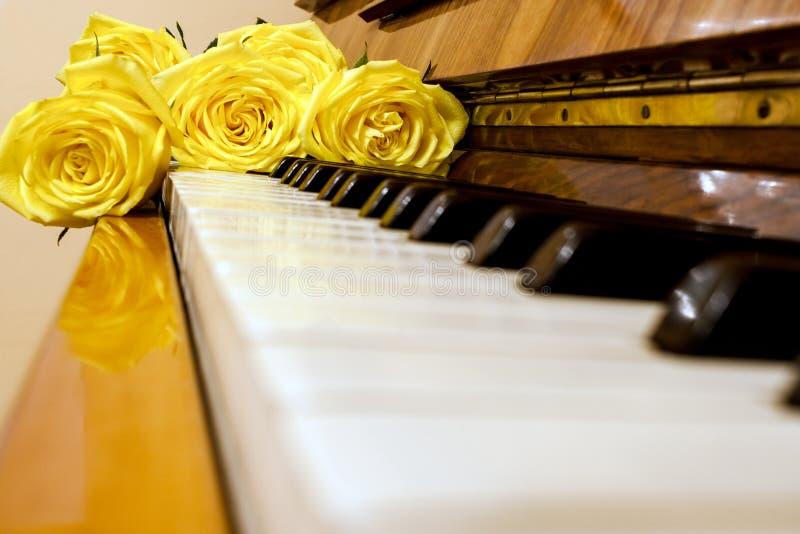 Lögn för gula rosor på det svartvita pianotangentbordet royaltyfri bild