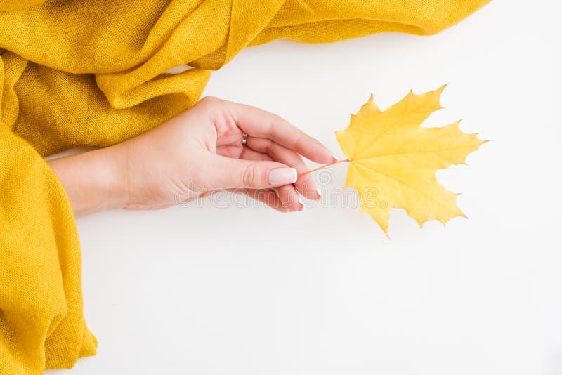 Lönnlöv för hand för höstlövverkkvinna gul fotografering för bildbyråer