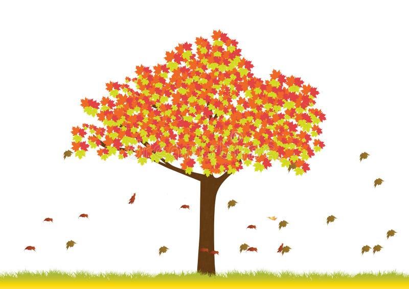 Lönnträd i höstsäsong royaltyfri illustrationer
