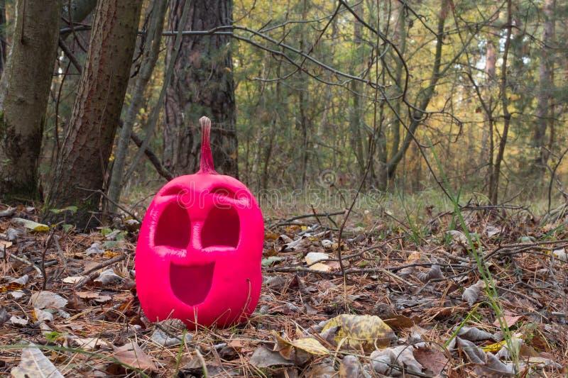 Lönsam och vänlig halloween-pumpa med rosa färg i höstskogen royaltyfri fotografi