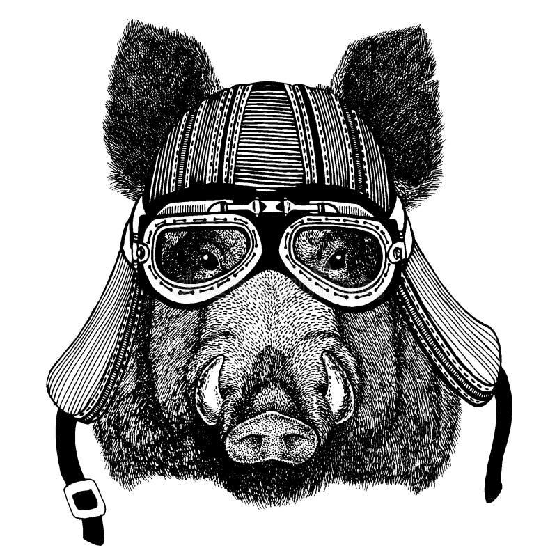 Lös aper, galt, gödsvin, hjälm för motorcykel för cyklistdjur bärande r stock illustrationer