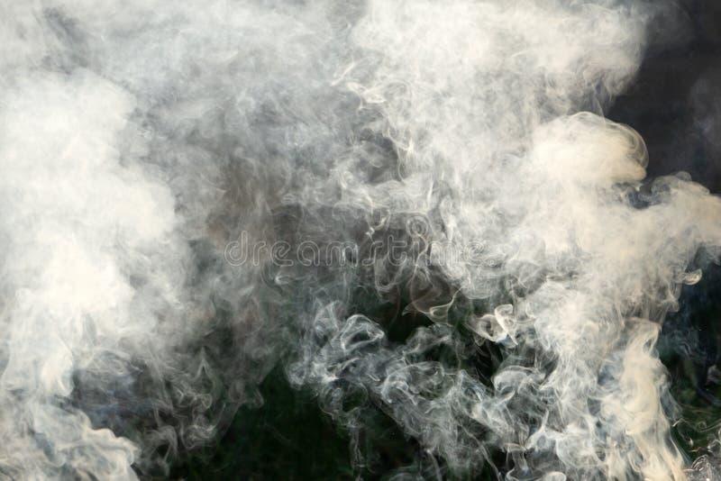 Lös brand i berg sörjer trädskogen, högt rökinnehåll Sydkust av Krim, Yalta fotografering för bildbyråer
