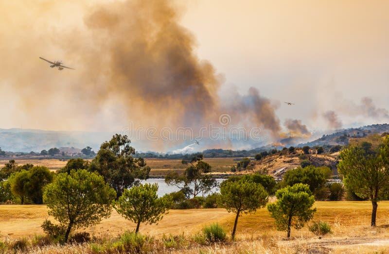 Lös brand som tacklas av plana vattenbombplaner royaltyfria bilder