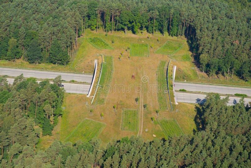 Lös bro (grön bro) över huvudvägen royaltyfria bilder