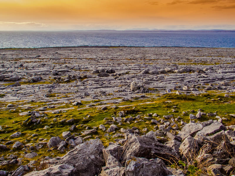 Lös Burren kust på solnedgången royaltyfria foton