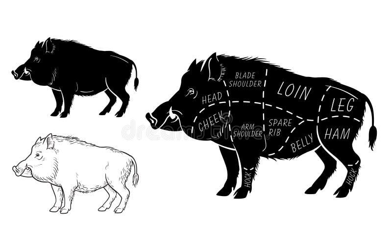 Lös gödsvin, intrig för diagram för snitt för modigt kött för galt - beståndsdeluppsättning på den svart tavlan stock illustrationer