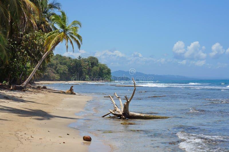 Lös karibisk kust i den Costa Rica Chiquita stranden arkivbilder