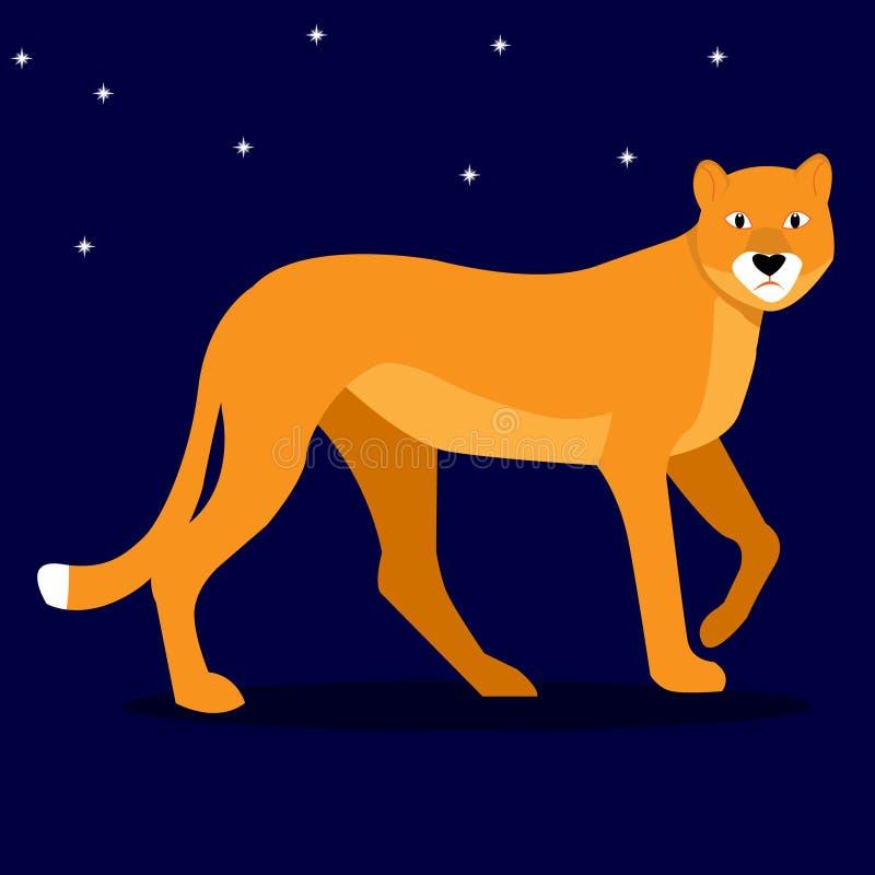 Lös katt för skönhet, följe av konungen av fälejonet - lejoninna på bakgrunden av den stjärnklara himlen för natt också vektor fö royaltyfri illustrationer