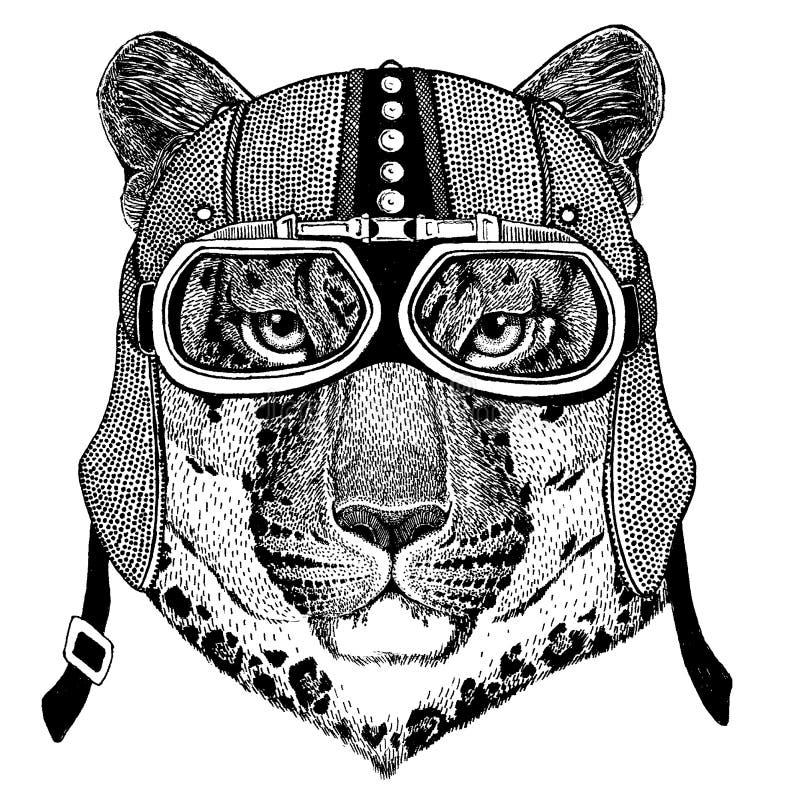 Lös katt, leopard, jaguar, bärande motorcykel för panter, aero hjälm Cyklistillustration för t-skjortan, affischer, tryck stock illustrationer