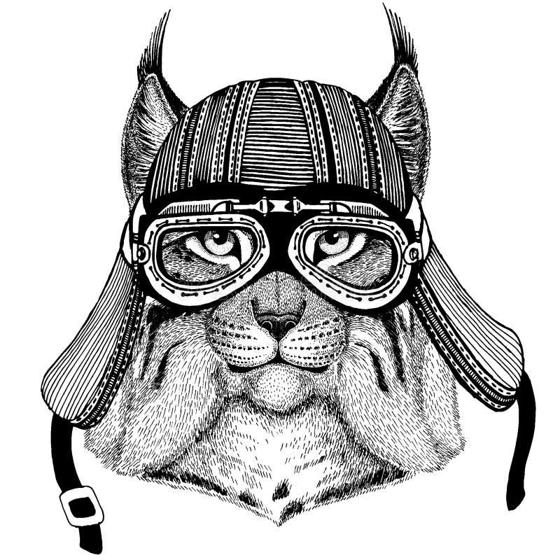 Lös katt, lodjur, bobcat, för löst hjälm för motorcykel cyklistdjur för trav bärande Utdragen bild f?r hand f?r tatueringen, embl vektor illustrationer