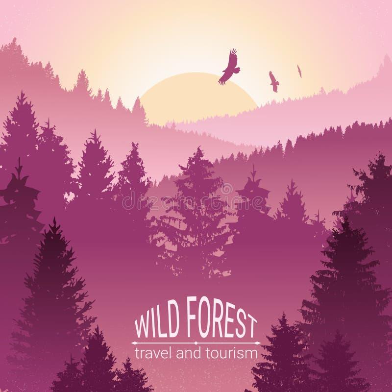Lös skogsoluppgång, berg, sörjer och granen Eagles och fåglar i flykten Turism och lopp Campa Horisontlinjen i th stock illustrationer
