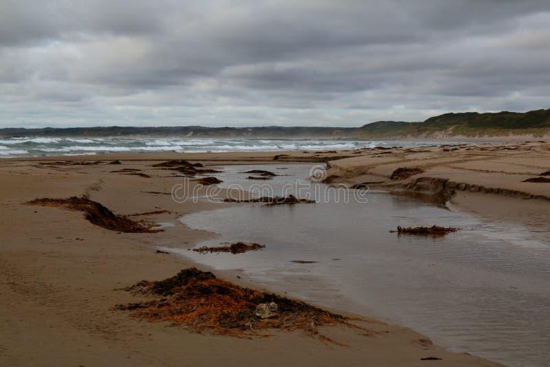 Lös strand i avlägset Arthur Pieman Conservation område, Tasmanien västkusten arkivbild