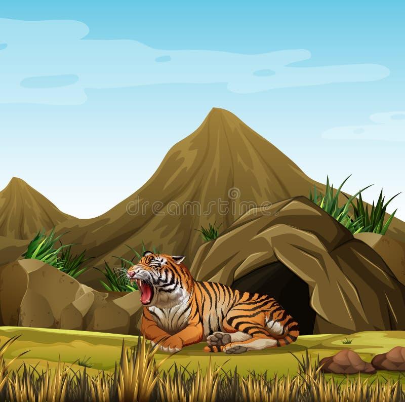 Lös tiger framme av grottan stock illustrationer