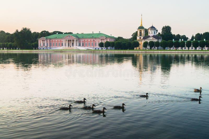 Lösa änder på slottdammet i museum-godset Kuskovo, Moskva arkivbild