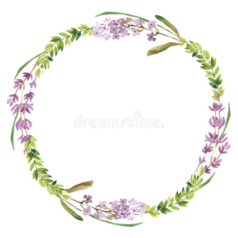 Lösa blommor och lavendelvattenfärgkrans stock illustrationer