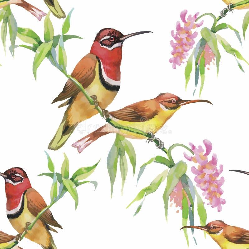 Lösa exotiska fåglar för vattenfärg på sömlös modell för blommor på vit bakgrund royaltyfri illustrationer
