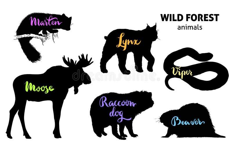 Lösa Forest Animals Set Älg mård, lodjur, tvättbjörnhund, bäver, huggorm stock illustrationer