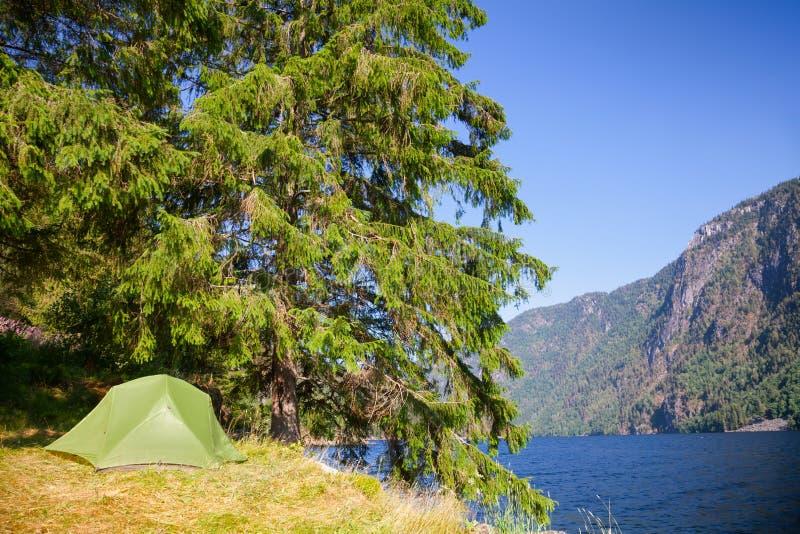 Löst campa vid en sjö i Norge royaltyfria foton