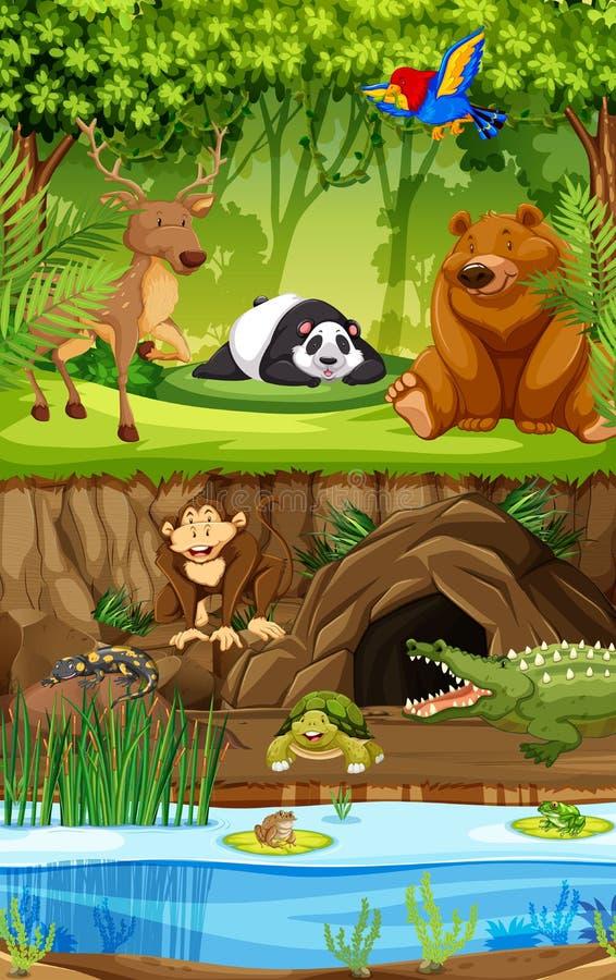 Löst djur i djungel royaltyfri illustrationer