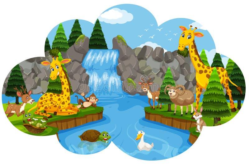 Löst djur på vattenfallet vektor illustrationer