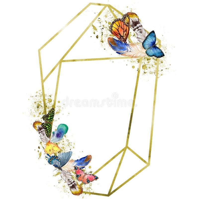 Löst kryp för exotiska fjärilar i en vattenfärgstil Fyrkant för ramgränsprydnad royaltyfri bild