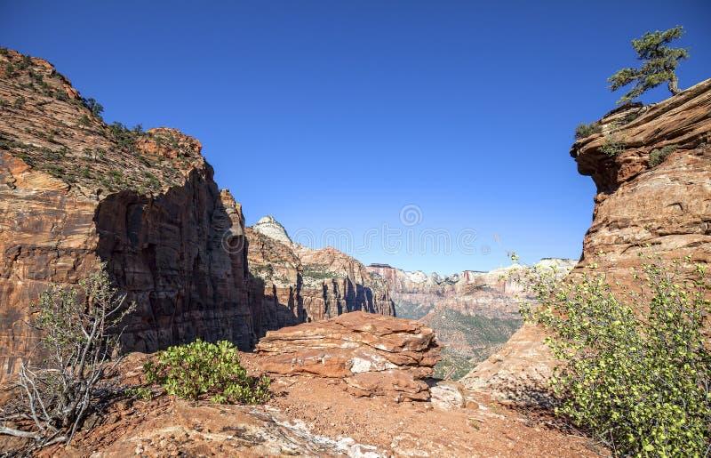 Löst landskap i Zion National Park, Utah, USA arkivfoto