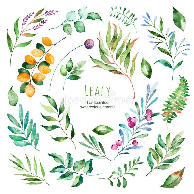 Lövrik samling 22 blom- beståndsdelar för Handpainted vattenfärg stock illustrationer