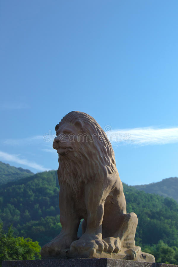 Löwe in den Karpaten stockbild