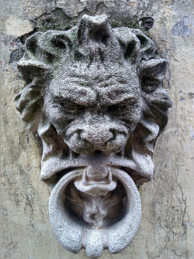 Löwe in der Betonmauer stockfotografie