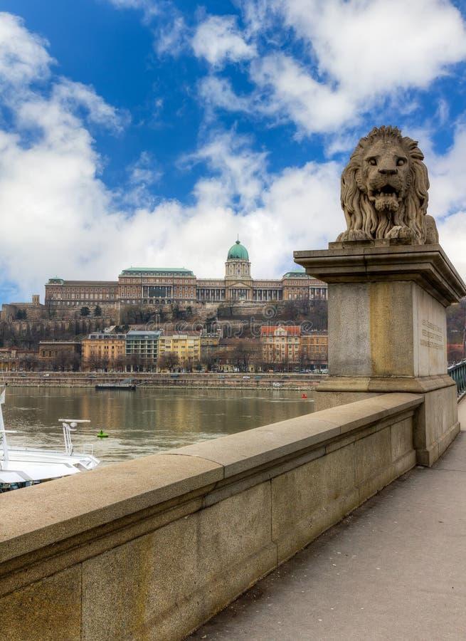 Löwe der Kettenbrücke, Buda Schloss im Hintergrund lizenzfreie stockbilder