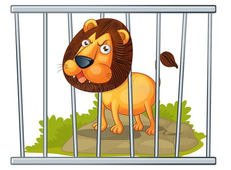 Löwe in einem Rahmen lizenzfreie abbildung