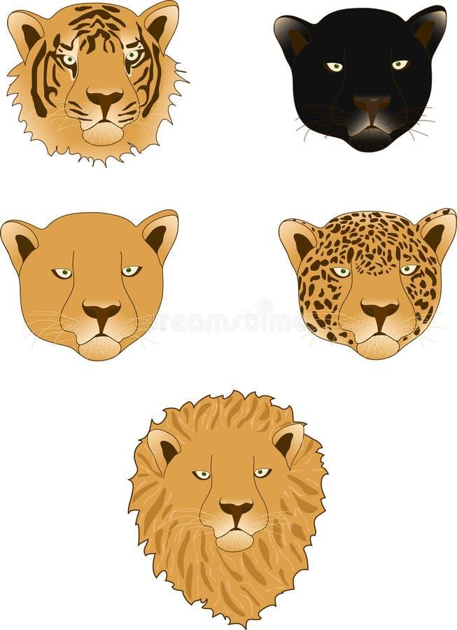Löwe, Leopard, Leopard, Tiger und Löwin lizenzfreie stockbilder