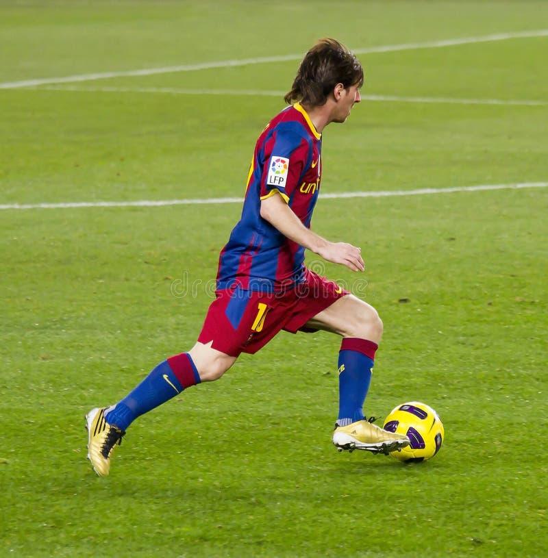 Löwe Messi in der Tätigkeit stockbild