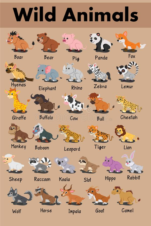 Löwekaninchenkuheberfuchskoala-Stierelefant-Makiwaschbärbüffeltigerflusspferdzebraleopard-Pandabärn-Schwein netter Karikatur-Vekt vektor abbildung