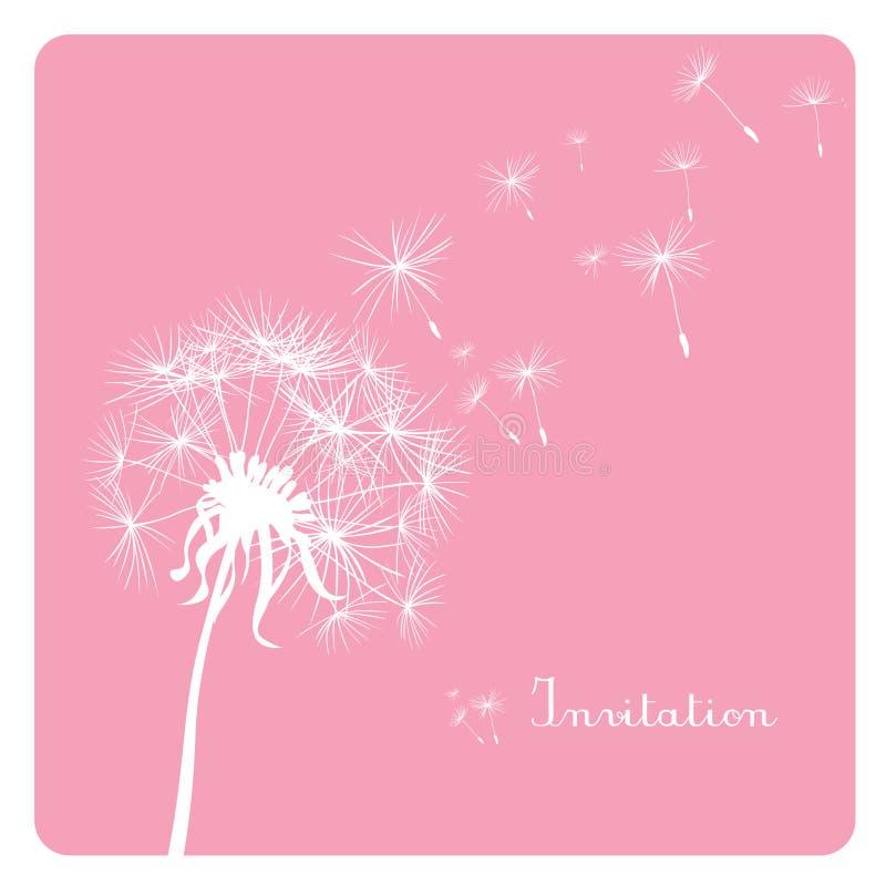 Löwenzahn auf rosafarbenem Hintergrund lizenzfreie stockfotos