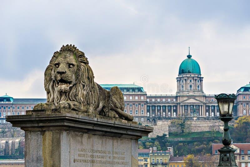 Löwestatue an der Hängebrücke in Budapest lizenzfreie stockfotos