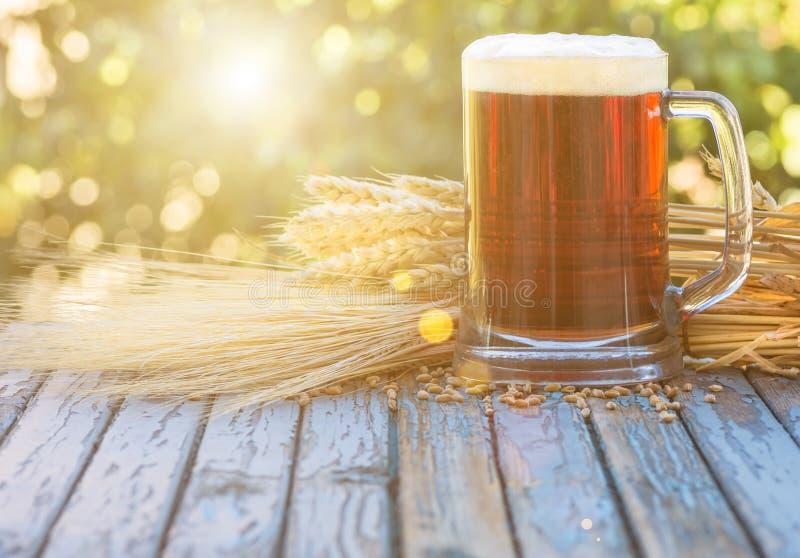 Lúpulos do malte da cerveja, fundo imagem de stock