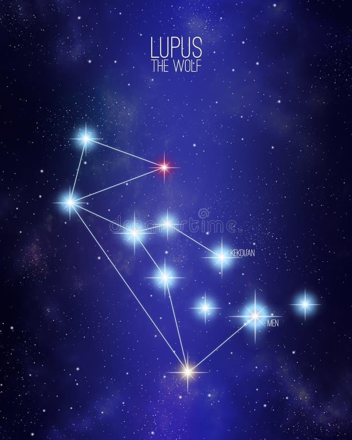 Lúpus a constelação do lobo em um fundo estrelado do espaço ilustração stock