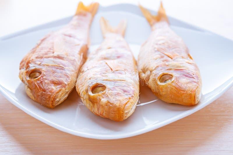Rote Fische stockfotografie