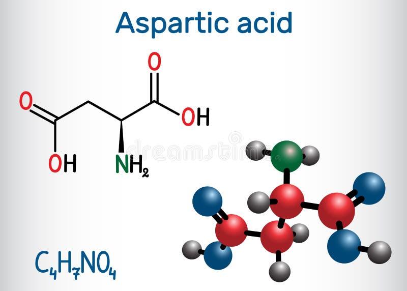 L ácido Aspartic ácido aspartic, Asp, D, molécula proteinogenic do ácido aminado do aspartato Fórmula química estrutural e molécu ilustração stock