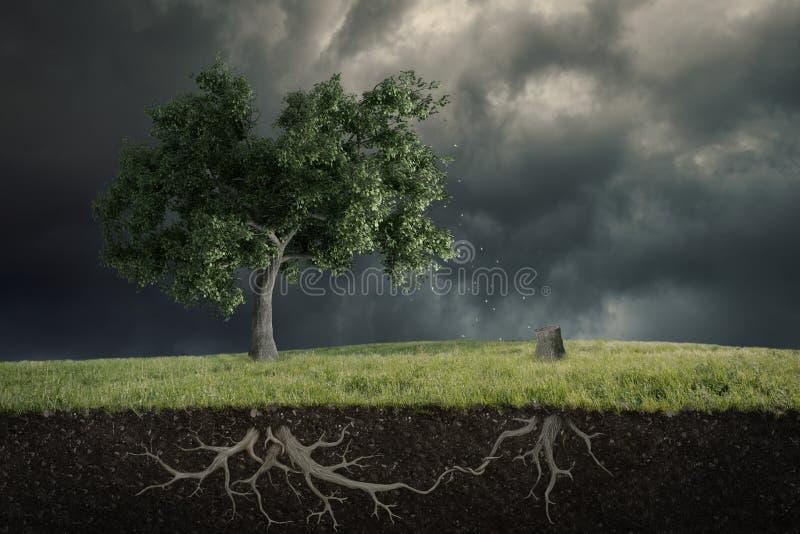 L'âme de la nature photographie stock