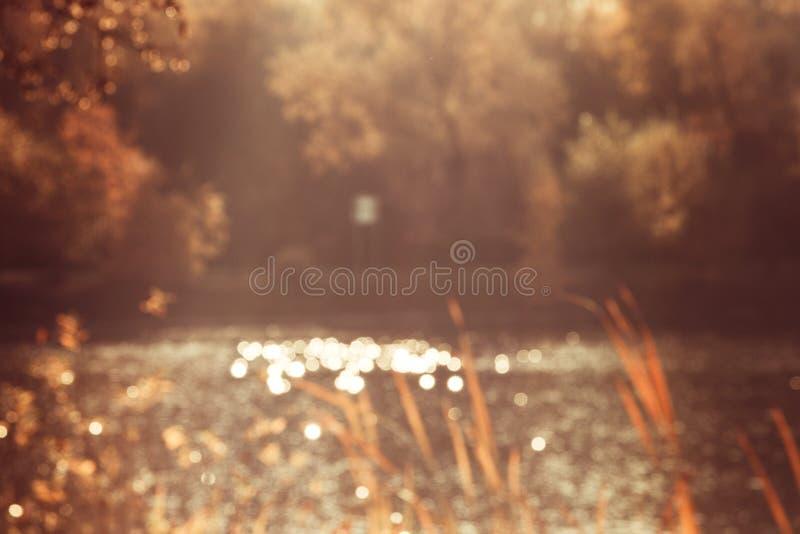 L'éclat du soleil sur l'eau dans l'étang a brouillé la photo du fond de nature d'arbres image stock