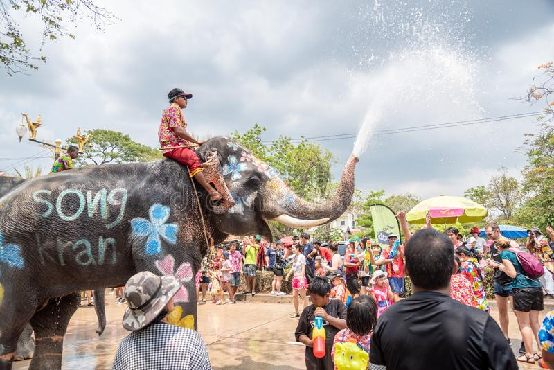 L'éléphant et les peuples éclaboussent l'eau dans le festival de Songkran photo stock