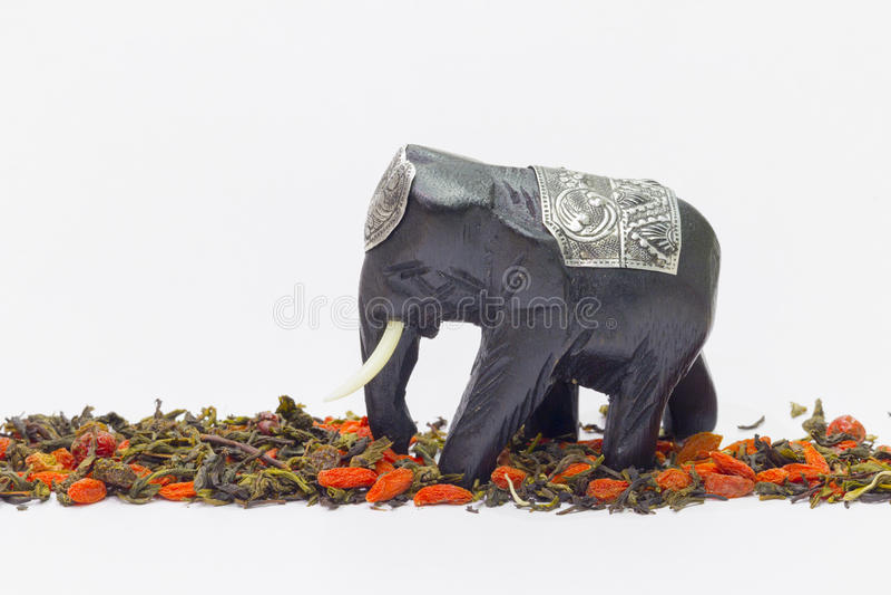 L'éléphant va au-dessus du thé et des wolfberries image libre de droits
