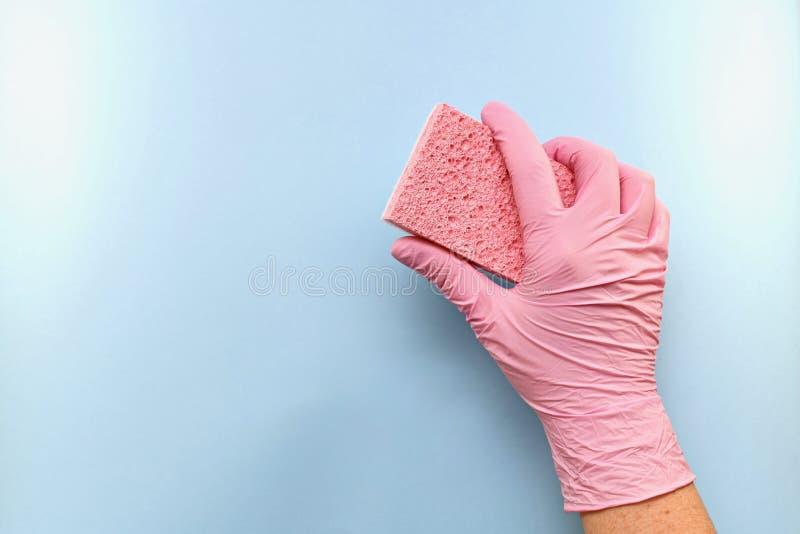 L'éponge dans une main enfilée de gants la maintient inclinée images stock