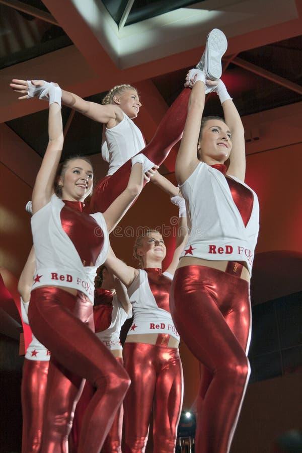 L'équipe de danse de renards rouges image libre de droits