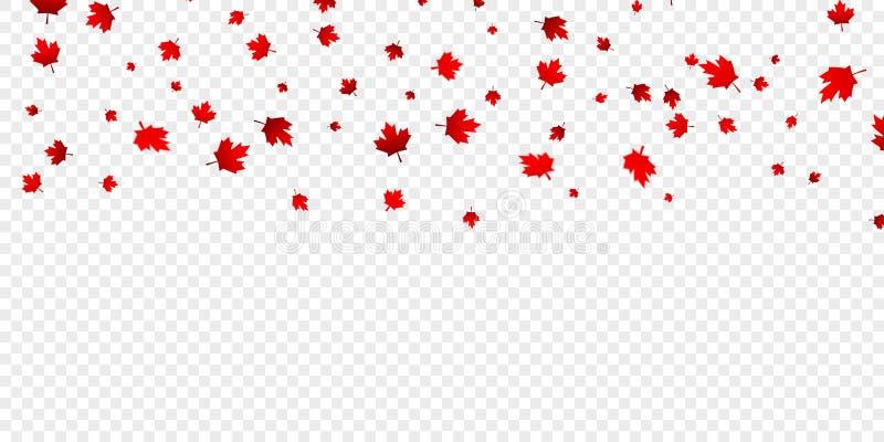 L'érable canadien part du fond Feuilles en baisse de rouge pour Canada jour le 1er juillet illustration de vecteur