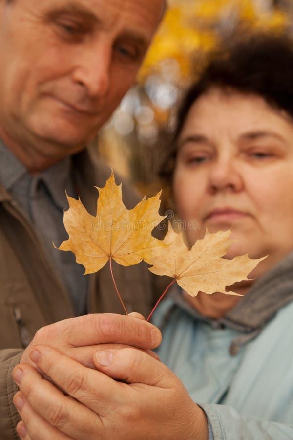 L'érable de prise de vieil homme et de dame âgée part sur des mains photo stock